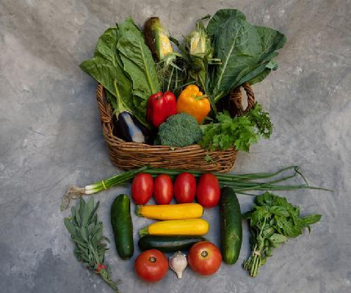 CSA Vegetable Share