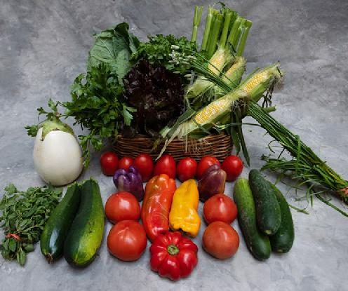 Large Vegetable Share